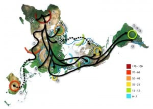 Path of ancient human migration